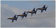 Blue Angel Photos Posters - Navy Blue Angels Poster by Michelle Faulkner