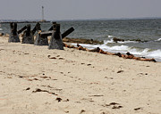 Courage Metal Prints - Navy Seals Crawl Up The Beach To Set Metal Print by Stocktrek Images