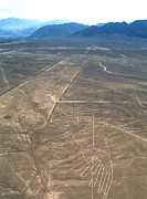 Landscape Drawings Posters - Nazca Lines Poster by David Nunuk