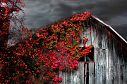 Smokey Mountains Digital Art - NC Tobacco Barn by Gray  Artus
