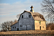 Nebraska. Photo Posters - Nebraska Barn in Otoe County Poster by Christine Belt