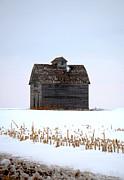 Nebraska Barn In Winter Print by Christine Belt