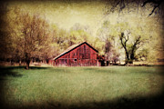 Barn Yard Digital Art Prints - Nebraska Barn Print by Julie Hamilton