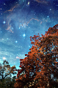 Languedoc Photo Prints - Nebula Treescape Print by Paul Grand Image