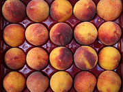 Fruit Stand Prints - Nectarines - 5D17068 Print by Wingsdomain Art and Photography