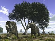 Mesozoic Era Posters - Nedoceratops Graze Beneath A Giant Oak Poster by Walter Myers