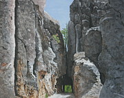 Needles Highway Framed Prints - Needles Highway Framed Print by Betty-Anne McDonald