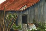 Building Painting Originals - Neighbor Dons Old Barn 2 by Marsha Elliott
