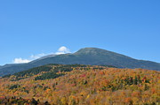 All - Nelson Crag Mt Washington Fall 2011 by Frank LaFerriere