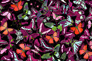 Photography Painting Prints - Neon Butterflies Print by JQ Licensing