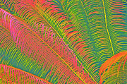 Cindy Longhini Posters - Neon Palm Abstract Poster by Cindy Lee Longhini
