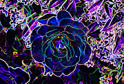 Black Rose Prints - Neon Rose Print by Chuck Staley