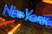 New York Police Station Prints - Neon Sign On A Police Station, New York City, New York State, Usa Print by Glowimages