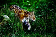 Tiger Fractal Framed Prints - Neon Tiger Framed Print by Stefan Kuhn