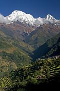 Nepal Annapurna Print by Walter Quirtmair