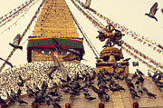 Ktm Framed Prints - Nepal Bouddhanath Stupa and Flying Pigeons at morning time. Framed Print by Anastasiia Kononenko