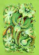 Green Foliage Drawings Prints - Neptunes Flowers Print by Olena Kulyk