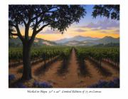 Napa Valley Vineyard Paintings - Nestled in Napa by Patrick ORourke