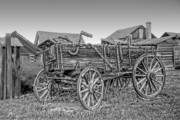 Hay Wagon Prints - Nevada City Montana Freight Wagon Print by Daniel Hagerman