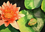 Lotus Bud Paintings - New Beginnings by Teresa Beyer