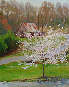 Cherry Blossoms Paintings - New Blossoms Old Barn by Keith Burgess