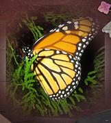 New Born Butterfly Print by Debra     Vatalaro