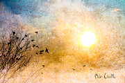 Wildlife Sunset Posters - New Day Yesterday Poster by Bob Orsillo