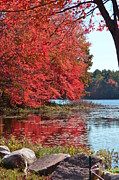 Mandi Howard - New England Fall