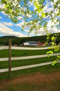 Catherine White Photo Prints - New England Farm Print by Catherine Reusch  Daley