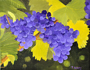 Blue Grapes Photos - New Grapes by Tom Amiss