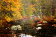 New Hampshire Fall Foliage Framed Prints - New Hampshire Wilderness-Autumn Scenic Framed Print by Thomas Schoeller