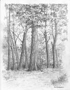 Jim Hubbard - New Jersey-Red Oak