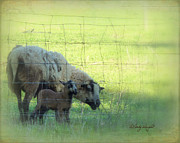 Ewes Art - New Life by Cindy Wright
