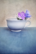 Flower Still Life Posters - New Life For An Old Coffee Cup Poster by Priska Wettstein