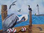 Debbie LaFrance - New Point Pelican