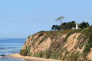 Golden Metal Prints - New Santa Barbara Lighthouse - Santa Barbara CA Metal Print by Christine Till
