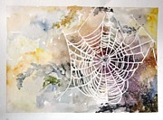 Marie Patri - New spider