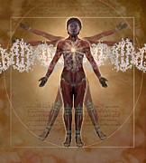 Dna Art - New Vitruvian Woman by Jim Dowdalls and Photo Researchers