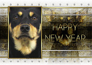 Kelpie Framed Prints - New Year - Golden Elegance Australian Kelpie Framed Print by Renae Frankz