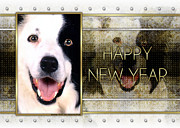 Collie Digital Art Posters - New Year - Golden Elegance Border Collie Poster by Renae Frankz
