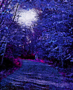 Dirt Roads Mixed Media - New York Autumn Night Forest by Steve Ohlsen