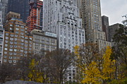Central Park Photos - New York City Buildings by Snow White