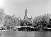 1980s Prints - New York City, Central Parks Bow Print by Everett
