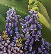Melissa Tobia - New York City Muscari