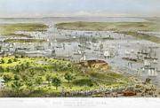 Marine Birds Framed Prints - New York Harbor, 1872 Framed Print by Granger