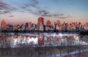 Central Park Digital Art Prints - New York Spring Awakening Print by Ariane Moshayedi