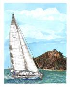 Bound Painting Prints - New Zealand bay of islands Bound Print by Jack Pumphrey