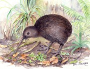 Kiwi Painting Originals - New Zealand Kiwi by Val Stokes