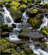 Newfound Gap Posters - Newfound Gap Waterfall Poster by Marti Buckely