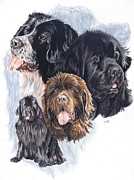 Canine Mixed Media Prints - Newfoundland Print by Barbara Keith